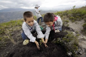 http://wildlifearticles.co.uk/ecuador-breaks-world-record-for-reforestation/