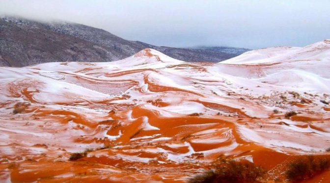 Sahara : De la neige dans le désert ! Ce n'était pas arrivé depuis 1979.