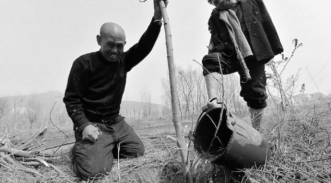 Chine : Ils plantent 10 000 arbres en 10 ans malgré leur handicap